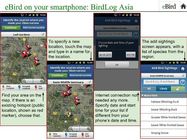 BidLogAsia-Intro2-reduced