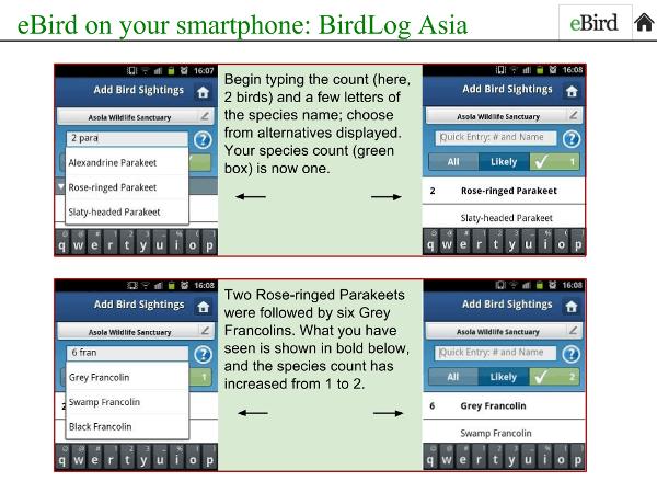 BidLogAsia-Intro3-reduced