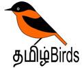 Tamilbirds