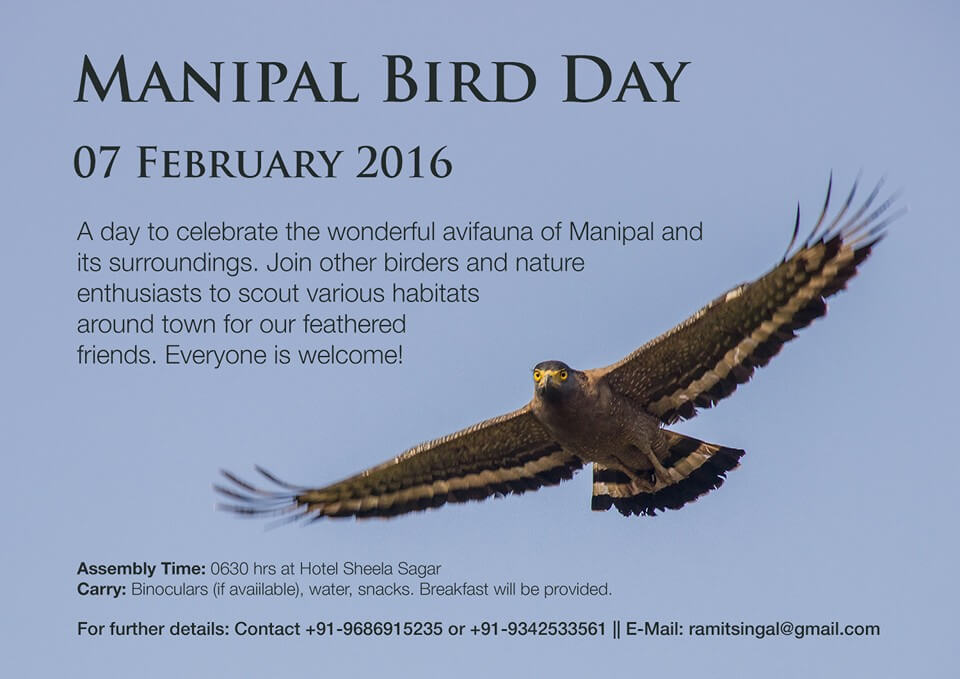 ManipalBirdDay-2016