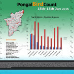Pongal Bird Count 2015 - Results