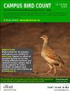 Campus Bird Count flyer