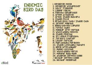 Endemic Bird Day India