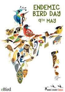 endemic bird day 400px