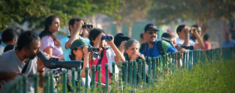 Birdwatchers in Bengaluru. Photo by Ravi Viswanathan.