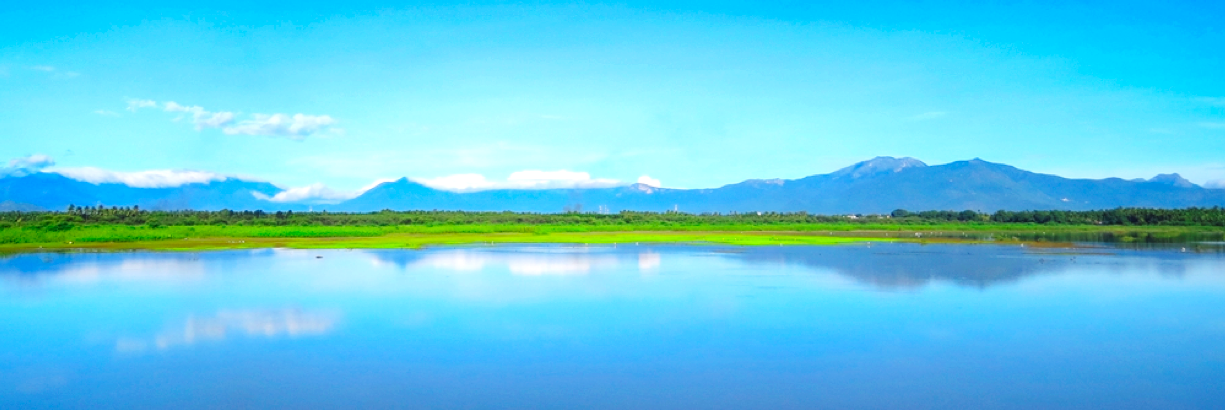 Wetland Bird Count: A Gateway to Citizen Science