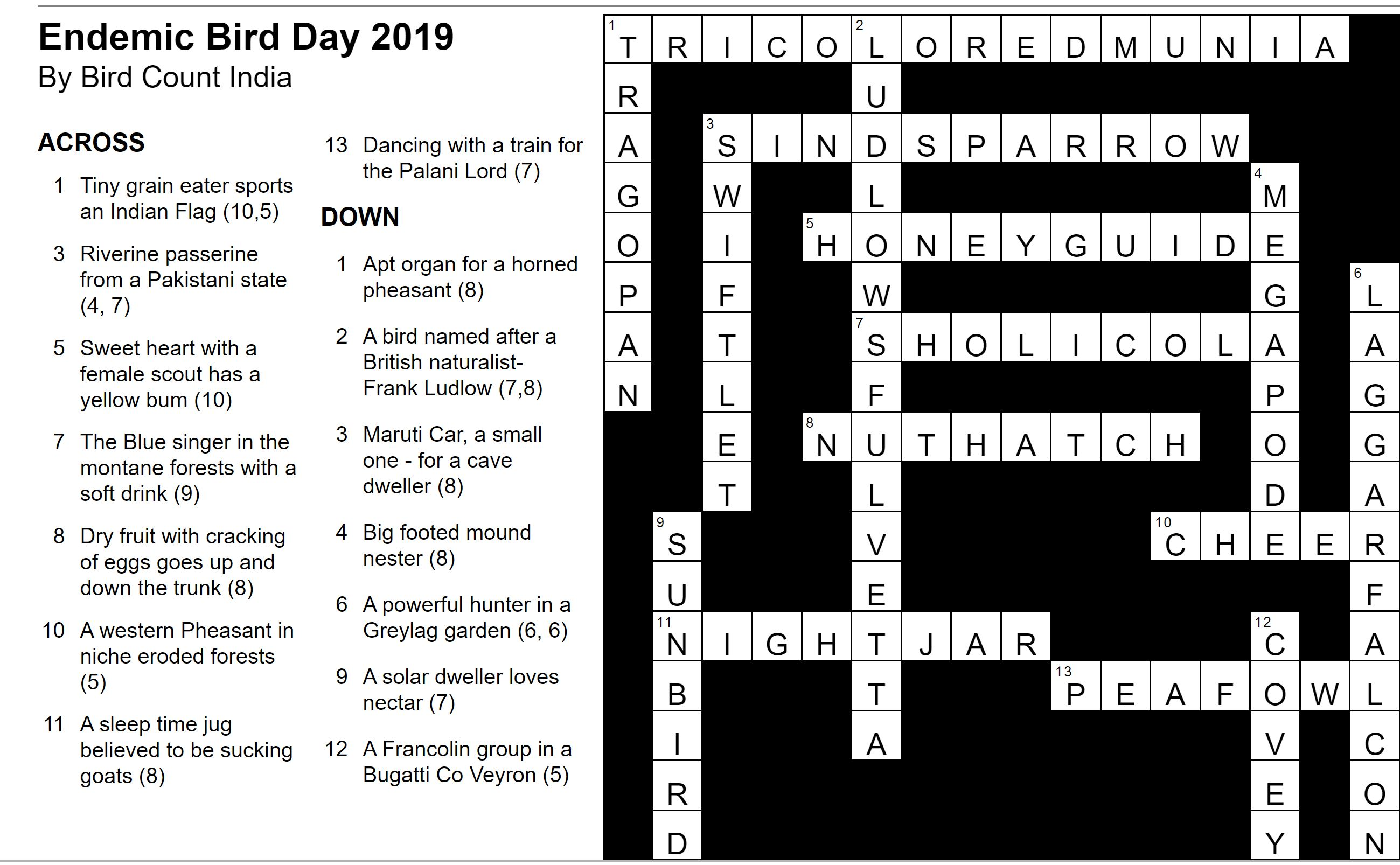Christmas In Italy Crossword.Endemic Bird Day 2019 Answers To Crossword Puzzle Bird Count India